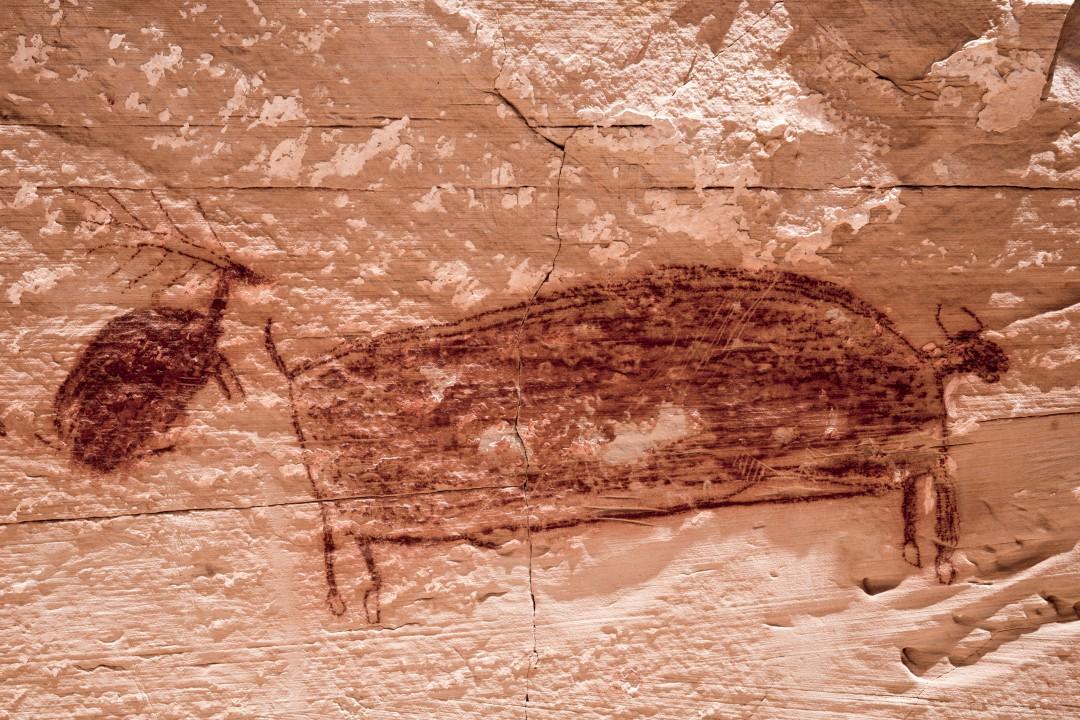 Horseshoe Canyon petroglyphs
