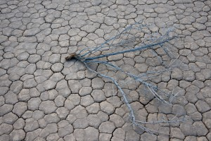 Desert dry lake
